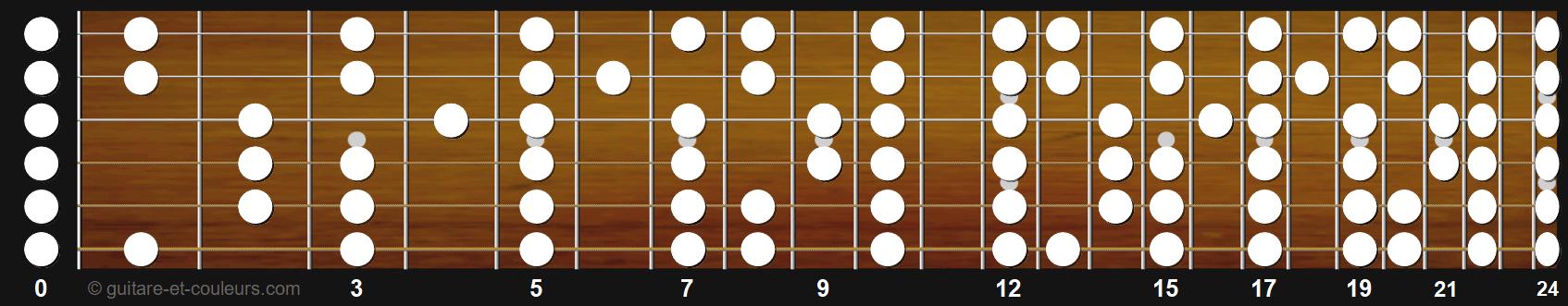 manche de guitare avec notes non altérées prépositionnées à mettre en couleur