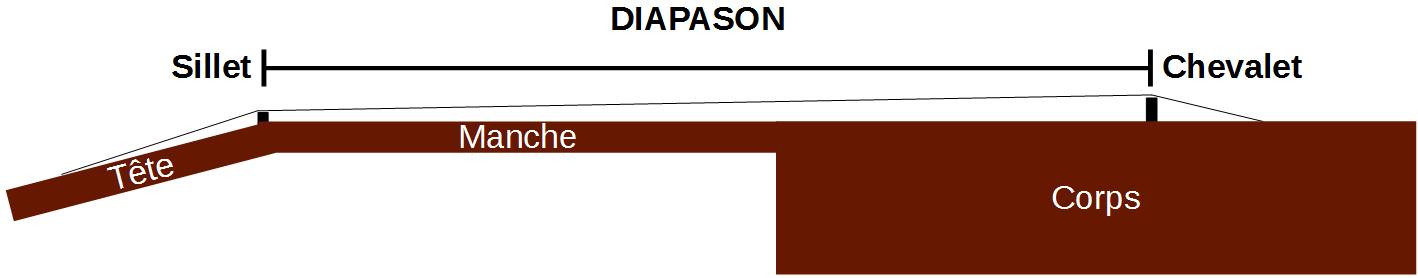 Diapason : entre sillet et chevalet