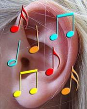 Travail du rythme : exercez votre oreille musicale en vous amusant avec GNU Solfège