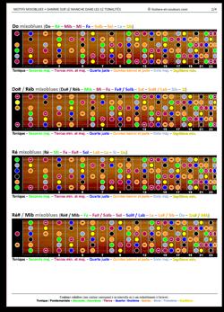Obtenez gratuitement un PDF avec le schéma de la gamme mixoblues sur le manche dans les 12 tonalités ainsi que les 5 motifs calqués sur les motifs blues